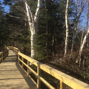 Fabulous boardwalk trails
